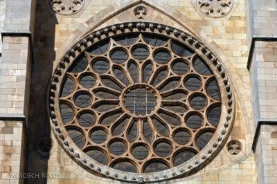 Por20071-Leon - Katedra - rozeta południowa
