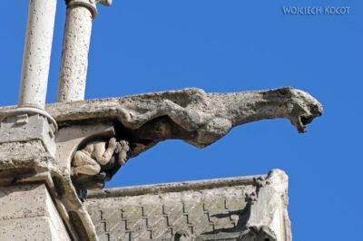 Por23202-Paryż - Notre-Dame - fasada E - rzygacze