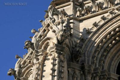 Por23275-Paryż - Notre-Dame - detale nawieży