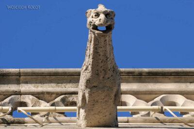 Por23277-Paryż - Notre-Dame - fasada E - rzygacze