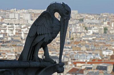 Por23278-Paryż - Notre-Dame - detale nawieży