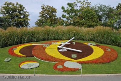 Gen01081-Zegar kwiatowy