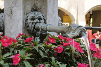 Gen06120-Bern-fontanna