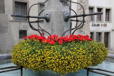 Gen07053-Fryburg-kwietna fontanna