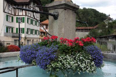 Gen07063-Fryburg-kwietna fontanna
