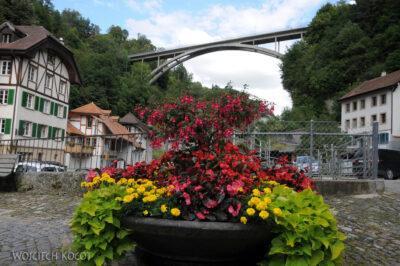 Gen07064-Fryburg-kwiaty