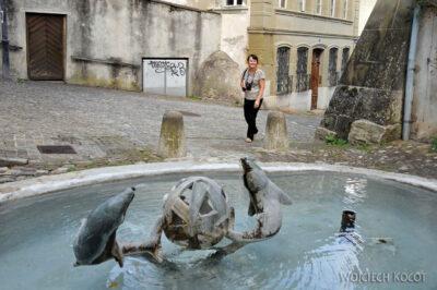 Gen07072-Fryburg-kwietna fontanna