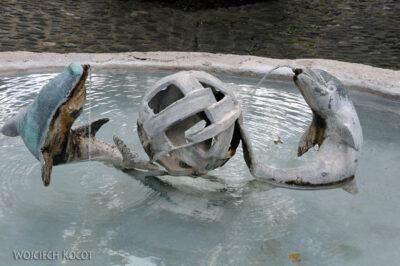 Gen07073-Fryburg-kwietna fontanna