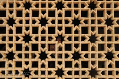 IN03174-Fatehpur Sikri - grobowiec Salima - koronki zbiałego marmuru