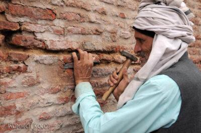 IN04029-Agra-Robiórka Fortu