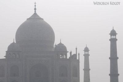 IN04170-Agra-Widok naTaj Mahal zParku Mehtabh Bagh