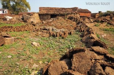 IN07180-Khajuraho-Krowie placki
