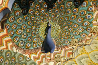 IN23137-Jaipur-pawie wPałacu Maharadży