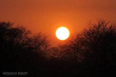 IN15048-Zachód słońca wChitwan Park