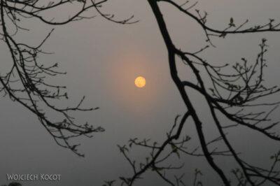 IN16015-Chitwan-wschód słońca