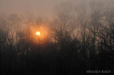 IN16017-Chitwan-wschód słońca