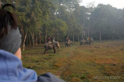 IN16029-Chitwan-Jazda nasłoniu