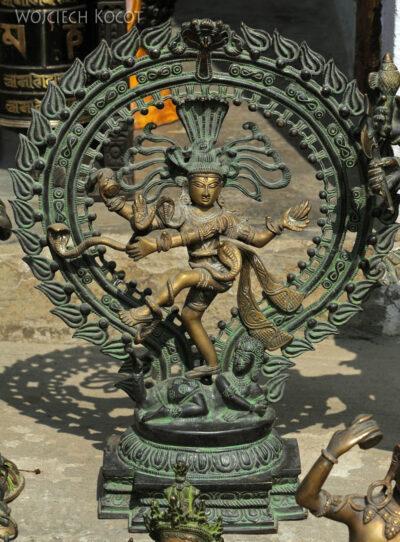 IN16087-Chitwan-Sziwa