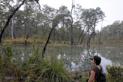 IN16148-Chitwan-spacer poparku