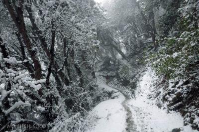 IN19018-Treking-dz2-Po drodze doGhorepani