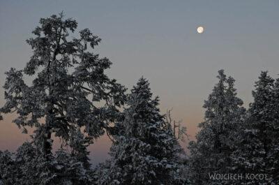 IN20008-Treking-dz3-Księżyc
