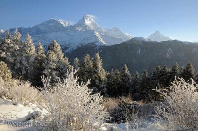 IN20083-Treking-dz3-Annapurna iMachhupuchhre