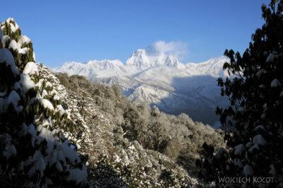 IN20087-Treking-dz3-Dhaulagiri 8175m