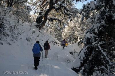 IN20108-Treking-dz3-Po drodze wdół doUlleri