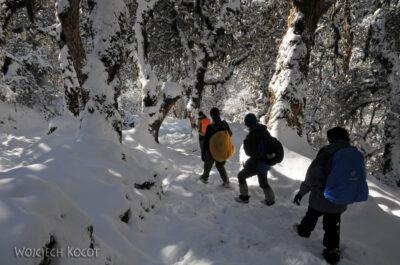 IN20109-Treking-dz3-Po drodze wdół doUlleri
