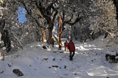 IN20110-Treking-dz3-Po drodze wdół doUlleri