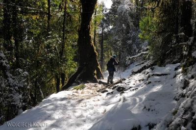IN20123-Treking-dz3-Po drodze wdół doUlleri