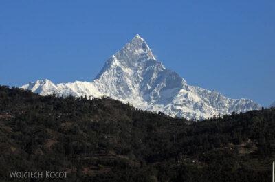 IN21006-Pokhara-Widok-z-naszego-tarasu-na-Machhapuchhre-6993-m-Fish-Tail