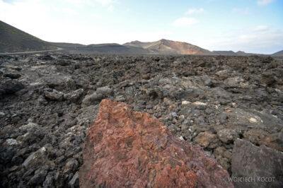 Lan3032-Krajobraz pól lawowych