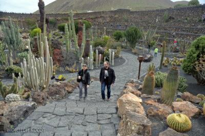 Lan4083-Aga wogrodzie kaktusów