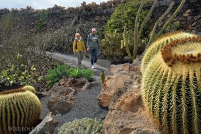 Lan4084-Gocha iAnia wogrodzie kaktusów
