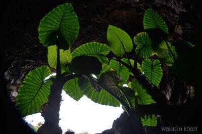 Lan4195-Przy grocie Quewa de Los Verdes