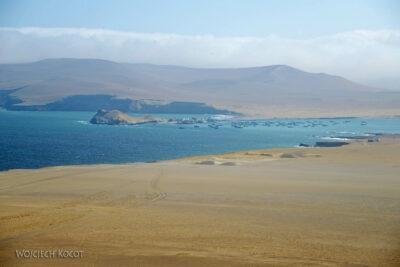 PBc116-Na półwyspie Paracas