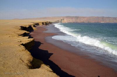 PBc119-Na półwyspie Paracas