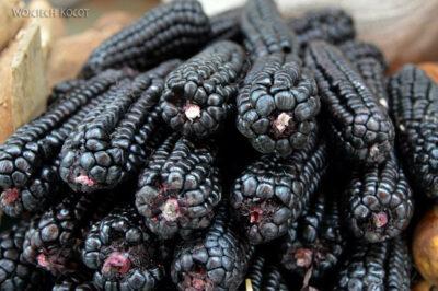 PBe162-Arequipa-na targowisku-różne odmiany kukurydzy
