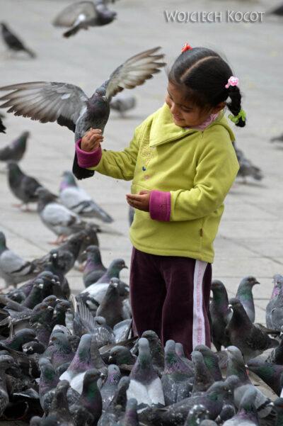 PBi106-La Paz-przy Plaza Murillo
