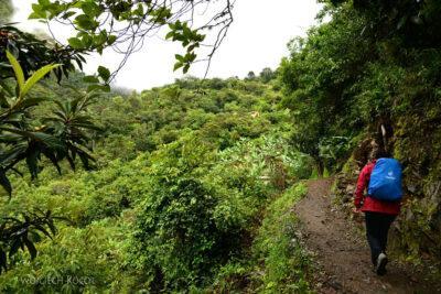 PBt040-Na trasie drugiego dnia trekingu