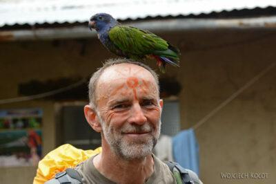 PBt084-Z papugą