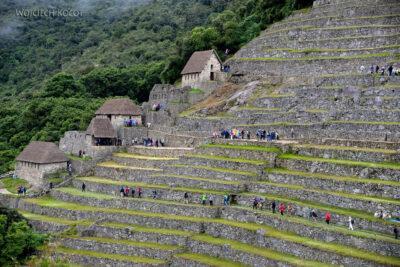 PBw064-Pośród ruin Machu Picchu
