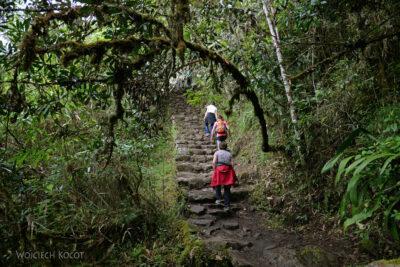 PBw077-W drodze naszczyt Machu Picchu