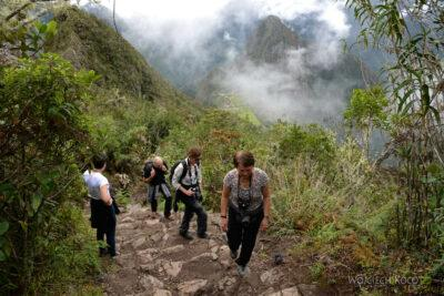 PBw079-W drodze naszczyt Machu Picchu