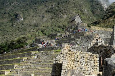 PBw171-Pośród ruin Machu Picchu
