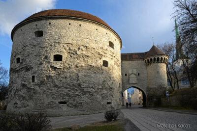 BałtF015-Tallinn-Baszta Gruba Małgośka
