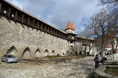 BałtF075-Tallinn-Miejskie Mury