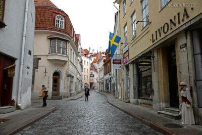 BałtF220-Tallinn-Kamienice