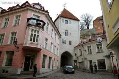BałtF222-Tallinn-Kamienice